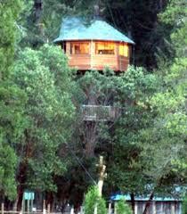 famous tree houses majestree2a jpg