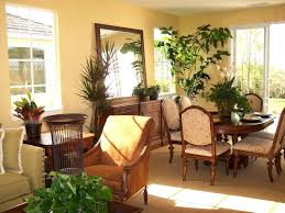 decorations house decorations plants and flowers home decor decorations house decorations plants and flowers home decor plants name imitation plants home decoration home