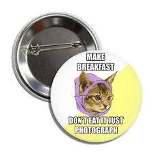 Hipster Kitty Meme - advice animals geek humor buttons page 1 pin badges
