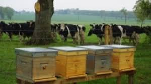 chambre d agriculture lozere opération séduction de la lozère au salon de l agriculture à