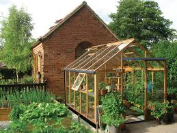 Greenhouse 6x8 Gabriel Ash 6x8 Essentials Cedar Wooden Greenhouse Gardenbox Co Uk