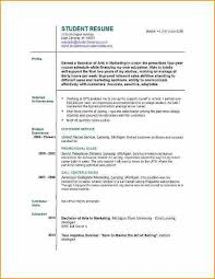 First Year College Student Resume 13 Example Of A First Job Cv Basic Job Appication Letter