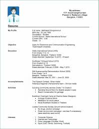 Good Resume Examples For College Students by Resume Format For College Students