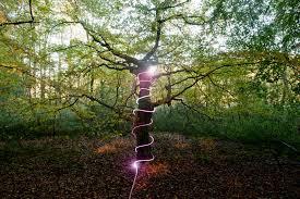 plug and play outdoor lighting using net lights in your outdoor lighting