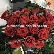 wholesale roses wholesale beautiful real preserved flower box