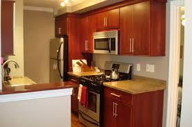 kitchen cabinets michigan surprising idea 15 plato hbe kitchen