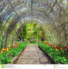 garden of flowers royalty free stock photos image 18468728