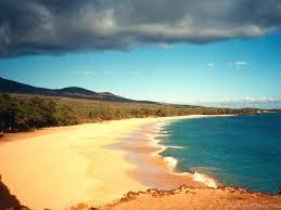 lutas na praia Images?q=tbn:ANd9GcTxx2ka1zHddRtIHDmPVKL7DIHpzzUZIYChfYPw_zAcRC8YoC0eXw