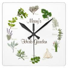 chef wall clocks zazzle