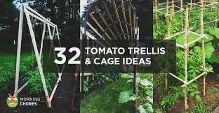 Wooden Trellis Plans 32 Diy Tomato Trellis U0026 Cage Ideas For Healthy Tomatoes