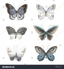 collection flying butterflies blue gray turquoise stock vector