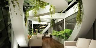 plante bureau comment choisir une plante pour bureau plantes d intérieur