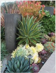 Small Backyard Landscaping Designs by Best 25 Xeriscaping Ideas On Pinterest Desert Landscaping