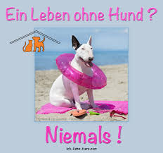 schöne hundesprüche ein leben ohne hund niemals http www ich liebe tiere