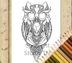 owl coloring page u2013 printable coloring page bird owl