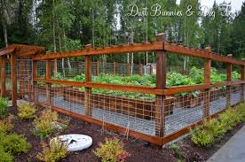 Deer Proof Fence For Vegetable Garden Fence Wire Trellis And Simple Wooden Gate Ideas Vegetable Garden Ideas