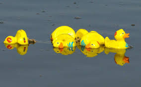 old bill called to cotswold village as row over rubber ducky race