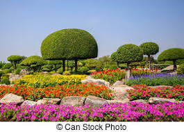 colorful garden flowers beautiful bright colorful flower stock