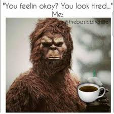 Tired Meme - 20 bigfoot memes that will kill you with laughter