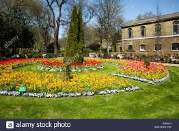 springtime flowers in st johns wood church gardens london uk stock