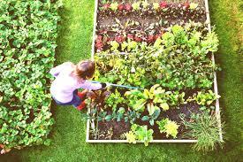 home kitchen garden design garden trends 2018 home garden design ideas