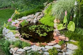Decorative Vegetable Garden by Landscape Amazing How To Landscape Decor Ideas Cool Green And
