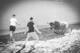 fotografia taurina paco rojas museros toros de jose escolar y