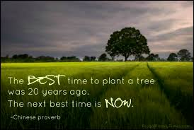 the best time to plant a tree frugal family times