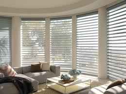 Windows Without Blinds Decorating Blinds Office Blinds Photo Ideas Tips Traditional