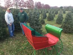 enchanted forest christmas trees christmas lights decoration