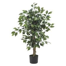 alcott hill parkes silk ficus tree in pot reviews wayfair