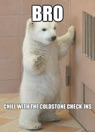 Chill Out Bro Meme - bro chill with the coldstone check ins chill out polar bear