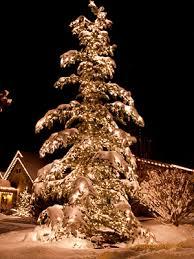 christmas light installation utah the christmas light professionals park city ut christmas light