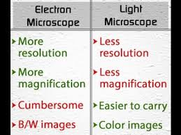name one advantage of light microscopes over electron microscopes light microscope vs electron microscope youtube