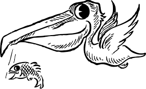 retro clipart illustration of a white pelican catching fish