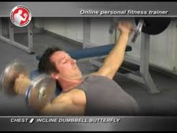 chest incline dumbbell butterfly