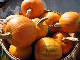 small pumpkins farm fresh organic food delivered to your door