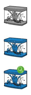 fish tanks supplies for sale fish aquariums food accessories