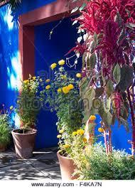 Botanic Garden Bronx by Frida Kahlo U0027s Casa Azul New York Botanical Garden The Bronx Ny
