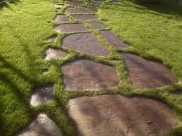 How To Clean Stone Patio by Best 25 Backyard Walkway Ideas Only On Pinterest Walkways