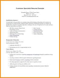 sample resume professional summary resume professional career