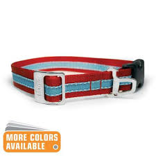 collars for dogs collar
