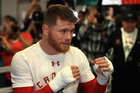 canelo alvarez vs julio cesar chavez jr staff picks and