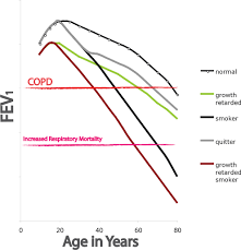 copd pathogenesis epidemiology and the role of cigarette smoke
