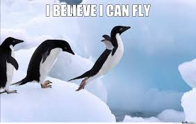 Penguin Birthday Meme - 05 march 2015 it is what it is