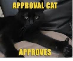 Approved Meme - approval cat approves meme on me me