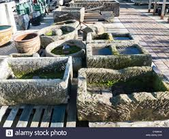 Garden Wall Troughs by Garden Stone Trough Stock Photos U0026 Garden Stone Trough Stock
