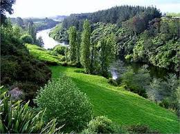 Cottages In New Zealand by Cambridge Holiday Homes Accommodation Rentals Baches And