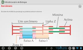 biology dictionary apk dictionary of biology free 0 2 apk android education apps