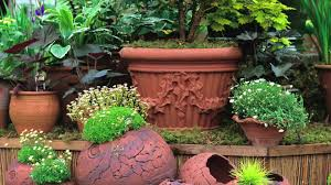 winter gardening ideas and inspiration hgtv